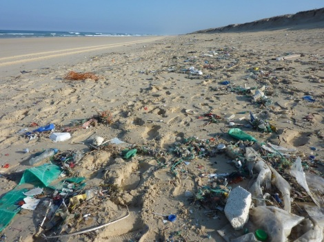 beach-sea-coast-waste-trash-pollution-567293-pxhere.com